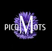 PicoMots [ Solution complète ]